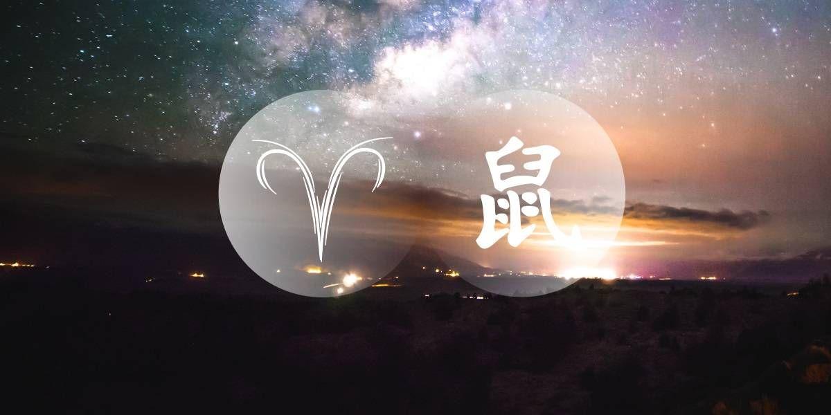 Rata Àries: el cercador de controvèrsies del zodíac occidental xinès