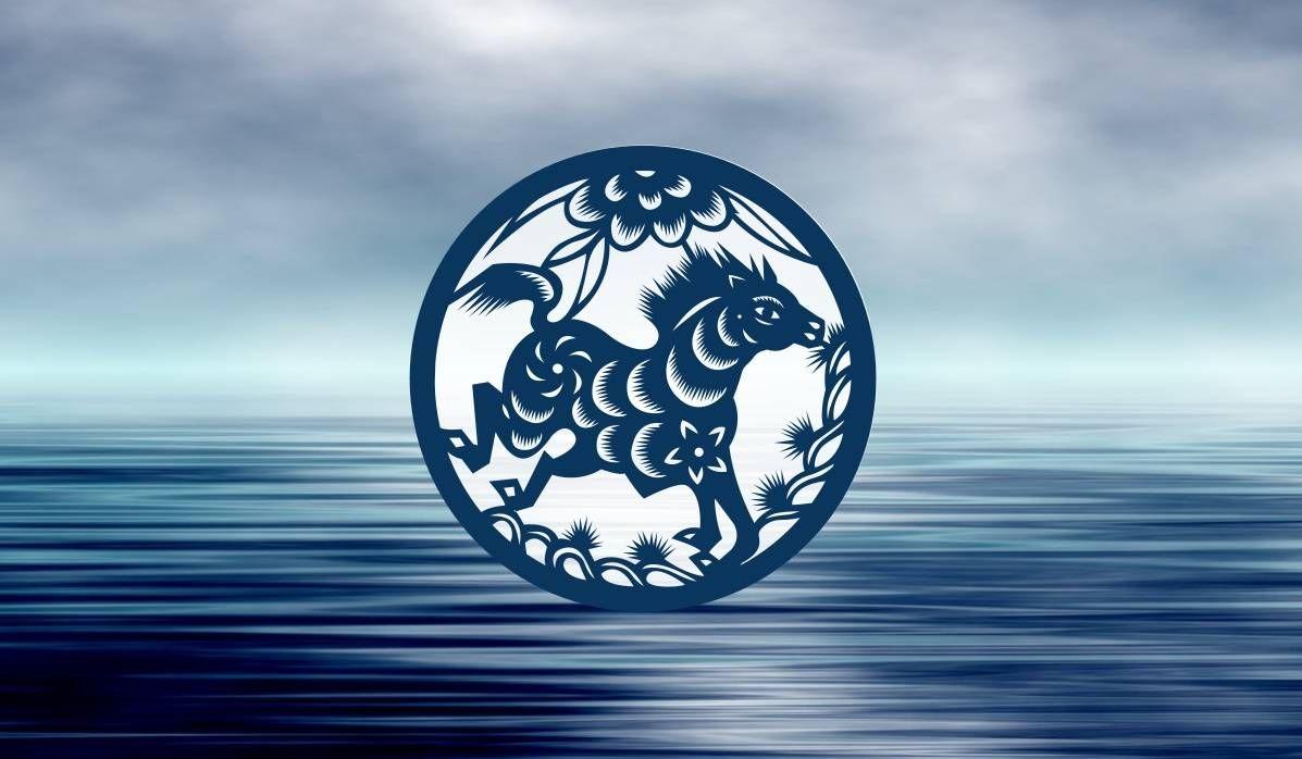 پانی کے گھوڑے کی چینی رقم کی اہم علامتیں